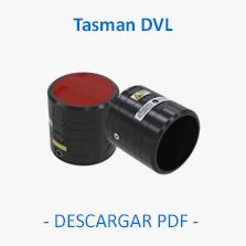 Tasman DVL