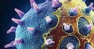 Nanotecnologias - TESCAN